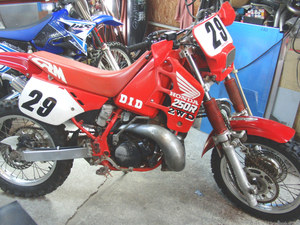 CIMG2551.JPG