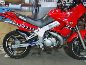 CIMG6157.JPG